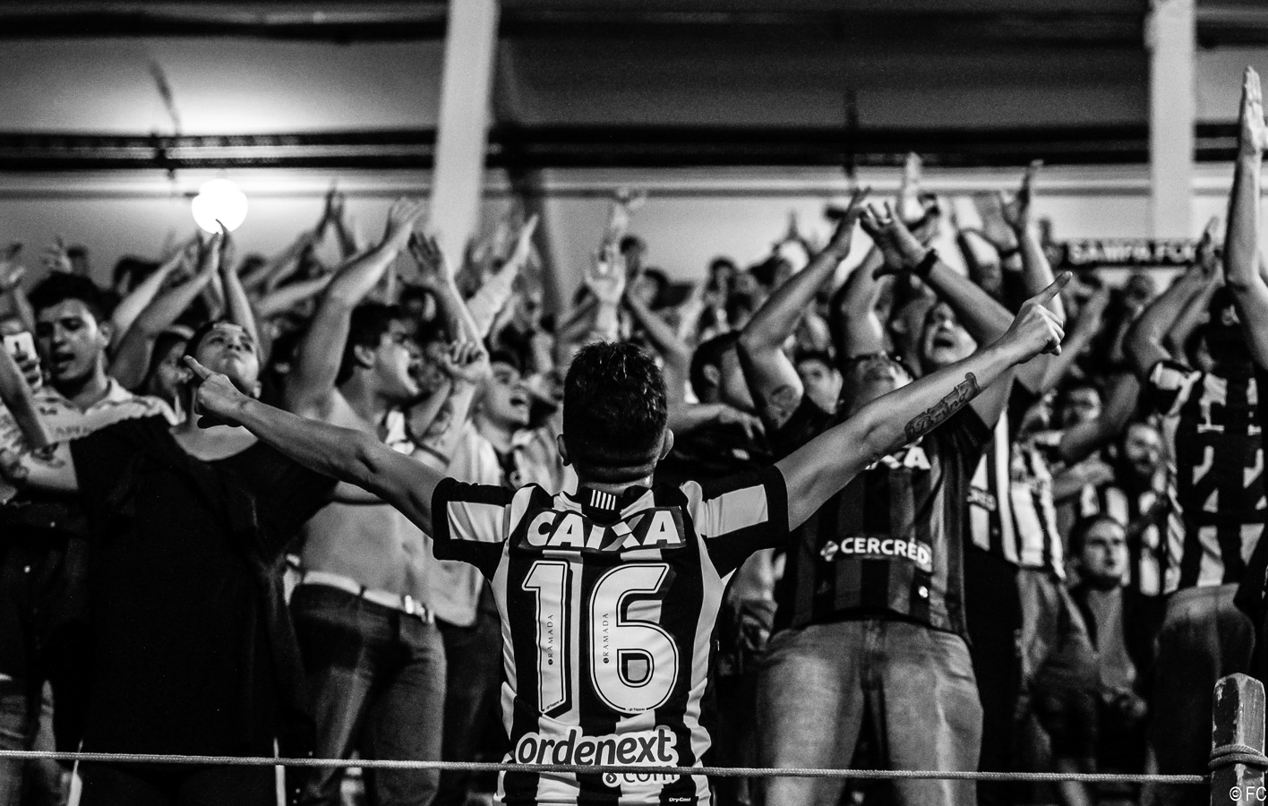 Fotos das torcidas em Santos x Botafogo
